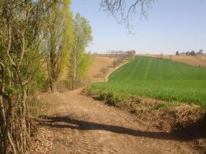 Sentier des Mortiers